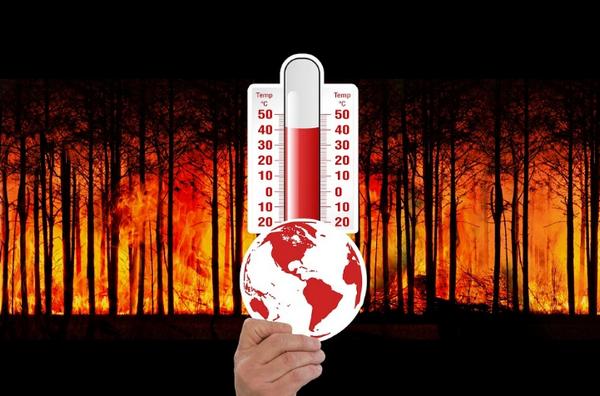 Звернення владики Василя Івасюка до вірних з причини спалення трави і лісів
